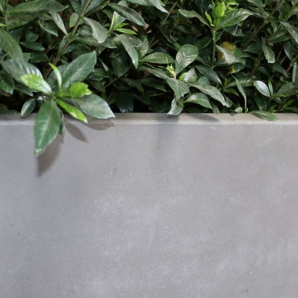 raw concrete planter tapered closeup view
