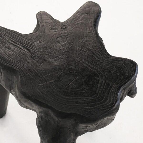 black teak root close up