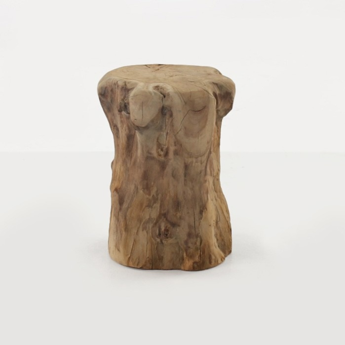 Teak Root Accent Table (Round)-0