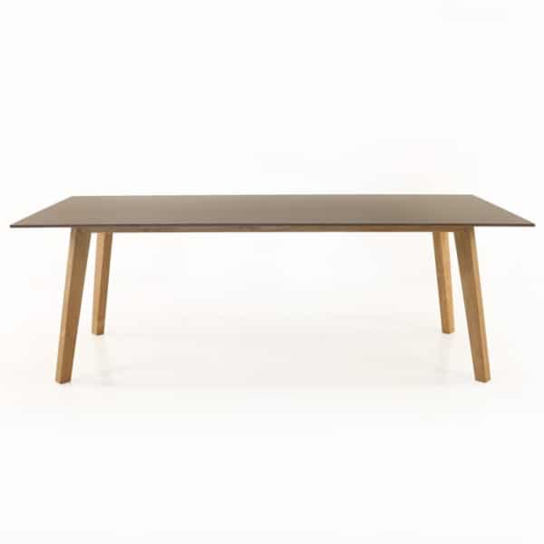 elements dining table side view